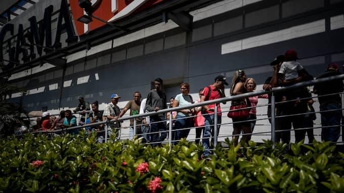 Köerna bevakas av militär. Foto: MIGUEL GUTIERREZ / EPA / TT / EPA TT NYHETSBYRÅN