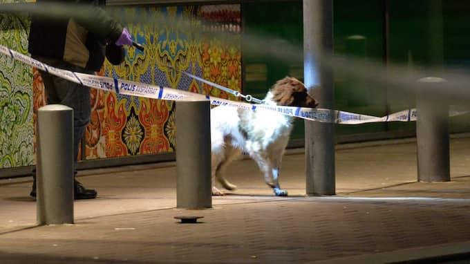 Polisens tekniker har varit på plats och polisen har även haft vapenhundar som sökt i området. Foto: Johan Nilsson / TT