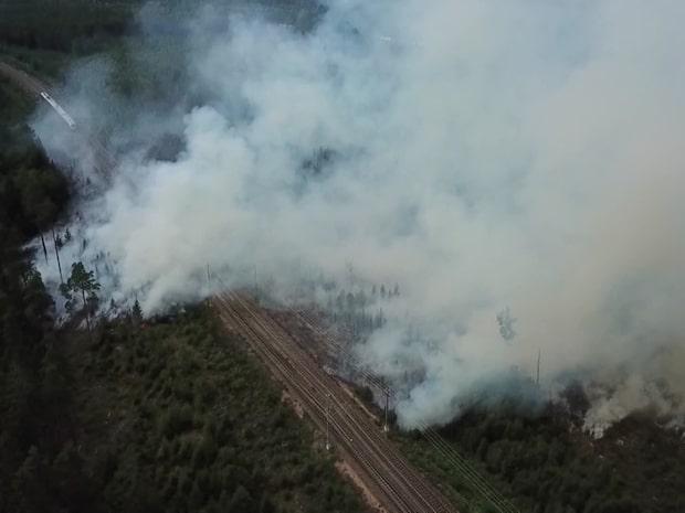 SMHI varnar för skogsbrand i hela Sverige