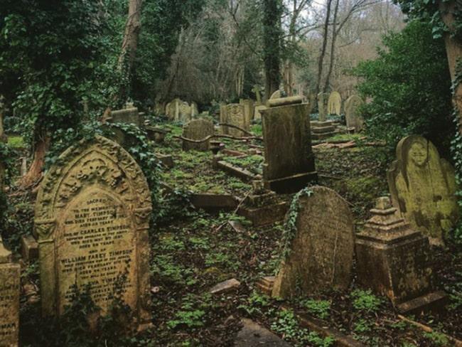 begravningsplatser i sverige