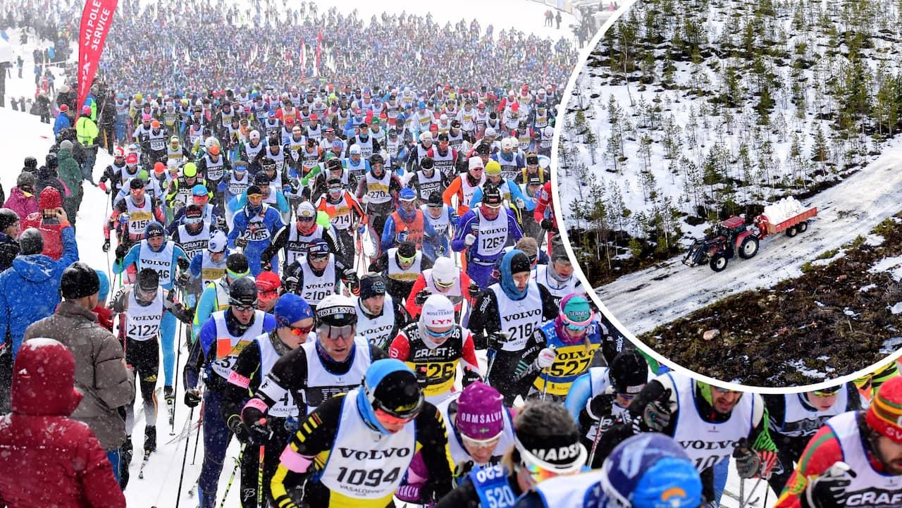 Fria bild: Sport, race, snabb, snö, skidåkare, vinter