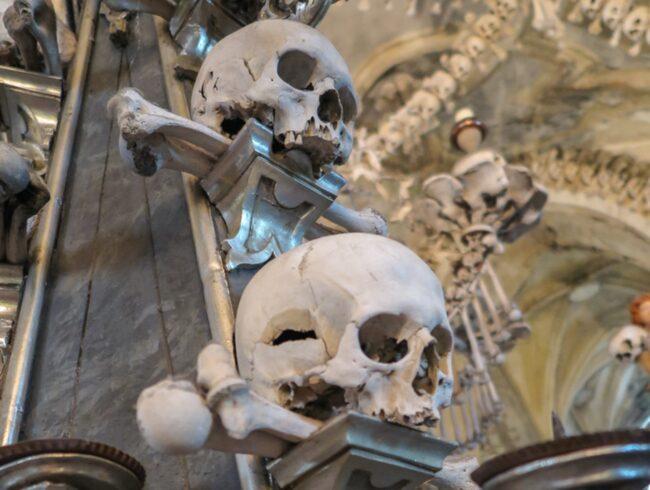 Skelettdelar från inte mindre än 40 000 människor