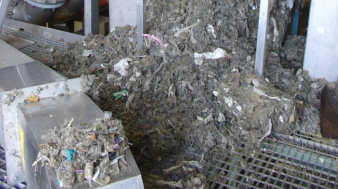 I Malmö rensar VA Syd bort 650 000 kilo skräp per år från avloppsvattnet. Foto: VA Syd