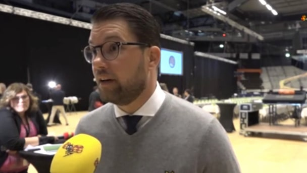 Jimmie Åkesson (SD): Rent hyckleri