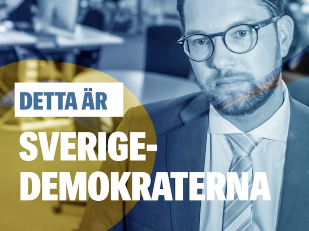 Detta är Sverigedemokraterna