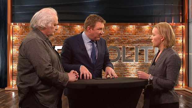 TV: Bara politik – se hela programmet