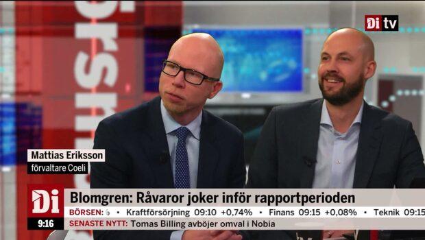 """Mattias Eriksson, förvaltare, Coeli: """"SSAB är ett hatobjekt. De förstör kapital."""""""