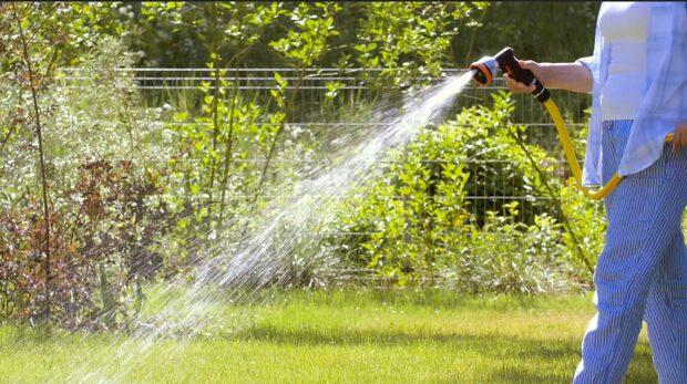 Knepen som gör undervek för din gräsmatta
