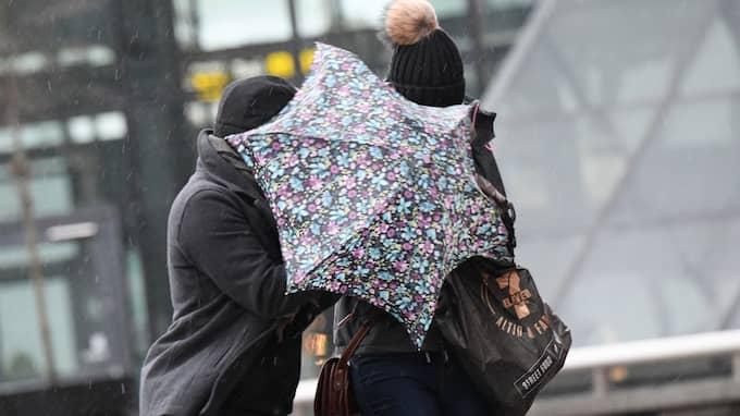 SMHI har utfärdat en klass 1-varning för mycket hård vind i Jämtlandsfjällen från i eftermiddag. Foto: JOHAN NILSSON/TT / TT NYHETSBYRÅN