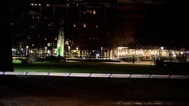 Polisens nya fynd efter mordet i Norrköping: Två vapen