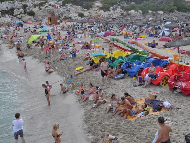 Under torsdagen övergick solbadandet i panik när en två meter lång blåhaj simmade in mot stranden.