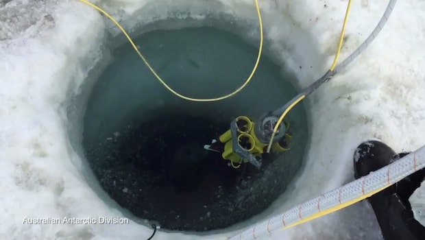 Få har sett hemligheterna under Antarktis is