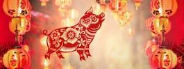 Kinesiska nyåret 2019 – här är allt du måste veta