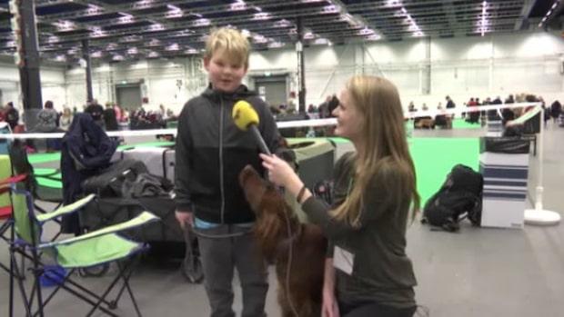 """Linus, 8: """"Jag gillar de flesta hundar"""""""