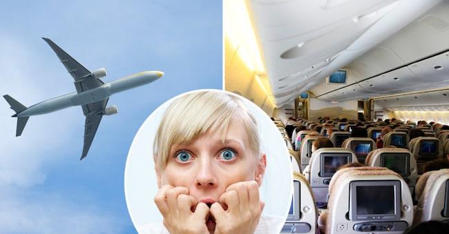 Polisen i USA har inringat en tjuvliga som systematiskt stulit passagerares kvarglömda prylar på flygplan.
