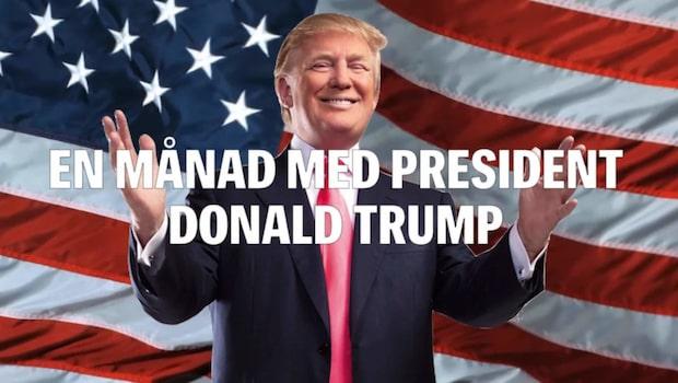 Så har Trumps första månad som president sett ut