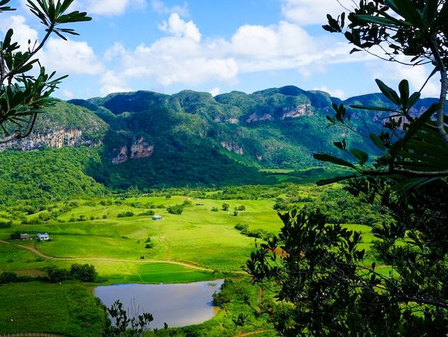 Utanför byn Viñales ligger tobaksplantaget Casa de Paco.