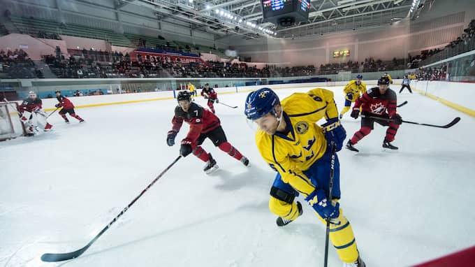 Oscar Möller. Foto: PETTER ARVIDSON / BILDBYRÅN
