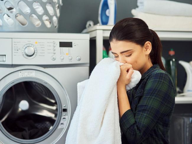 """Konsumenternas ökande intresse för hållbarhet har knappast gått företagen förbi. I dag finns en uppsjö tvätt- och sköljmedel på butikshyllorna som slänger sig med begrepp som """"växtbaserat innehåll"""", """"naturlig"""", """"vegan"""" eller """"oproblematiska ingredienser""""."""
