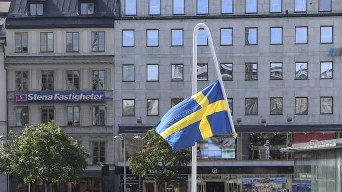 """Mattias Norströms konstverk """"Du gamla, du fria"""". Foto: HENRIK MONTGOMERY/TT / TT NYHETSBYRÅN"""
