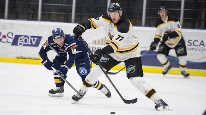 kval till hockeyallsvenskan