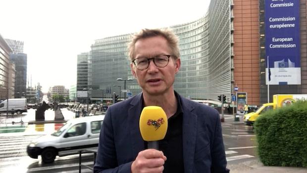 """Magnus Falkehed: """"Det kokar här i Bryssel"""""""
