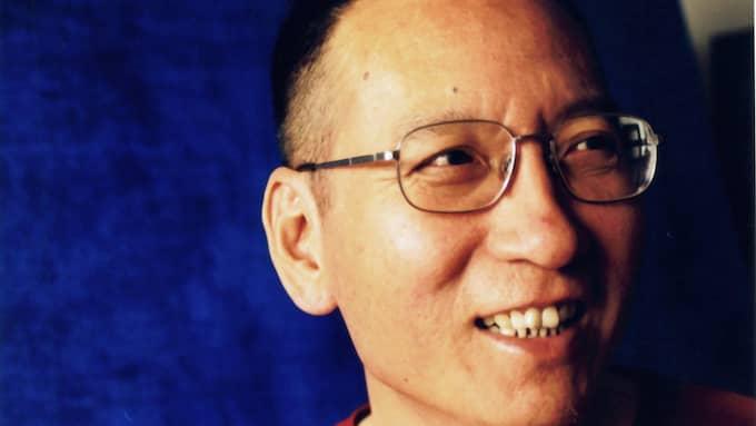 Den kinesiske Nobelpristagaren och regimkritikern Liu Xiaobo är död. Foto: LIU XIA HANDOUT/EPA/TT