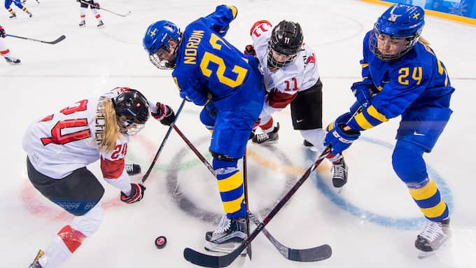 Sverige förlorade mot Schweiz. Foto: CARL SANDIN / BILDBYRÅN