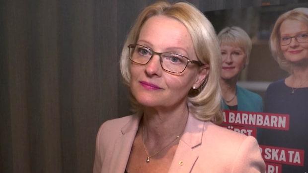 """Heléne Fritzon (S): """"Vi vill ha starkare EU"""""""