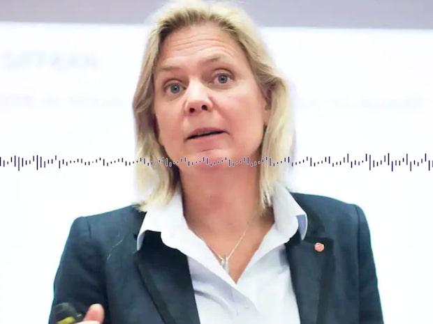 Magdalena Andersson håller med Löfven om segregationen