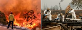 Likhundar söker efter  saknade i branden