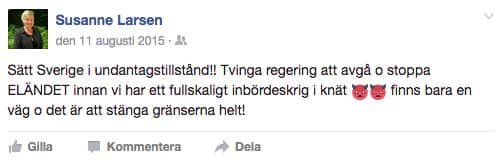 Politikern har bland annat skrivit att hon befarar inbördeskrig och vill ha Sverige satt i undantagstillstånd.
