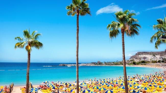 Med 2700 soltimmar om året kan man förstå varför Gran Canaria blivit en sådan favorit bland svenska turister.