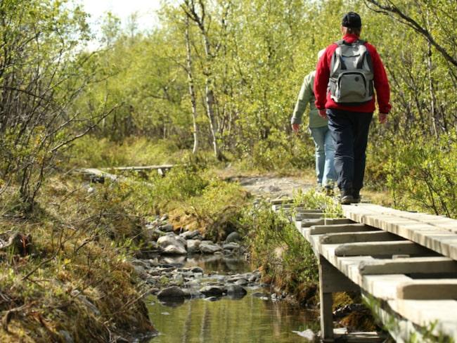 <span>Att vandra runt Kebnekaise är väldigt populärt.</span>