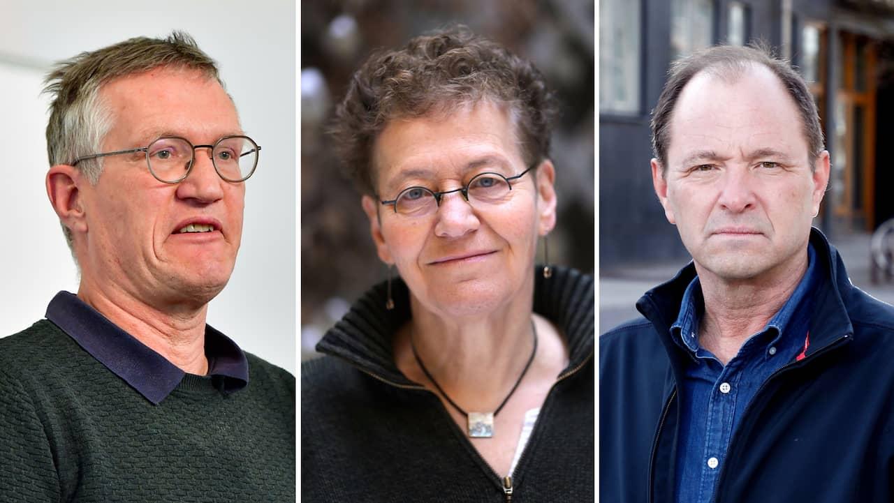 Tegnell: Därför har forskarna totalt fel om svenska dödsfallen