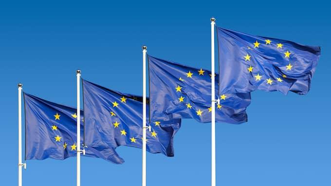 Det är dags att dra i handbromsen när det gäller EU och dess ökade kostnader, skriver Lotta Gröning.
