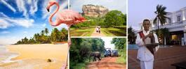 17 måsten du inte vill missa på Sri Lanka
