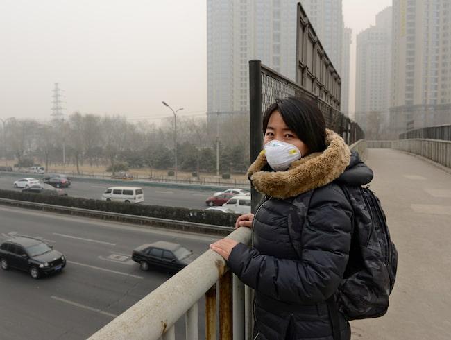 Den visar att luftkvalitén på fartyget är lika illa som i luftförorenade storstäder som Peking.
