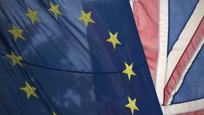 Storbritannien lämnar EU. Foto: HANNAH MCKAY / EPA / TT / EPA TT NYHETSBYRÅN