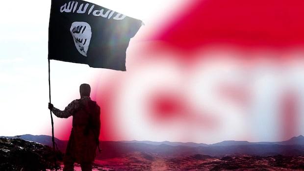 Svenska skattepengar skolade is-terrorister