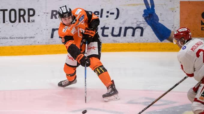 Linus Karlsson jagas av Växjö och Rögle. Foto: MAGNUS LEJHALL / BILDBYRÅN
