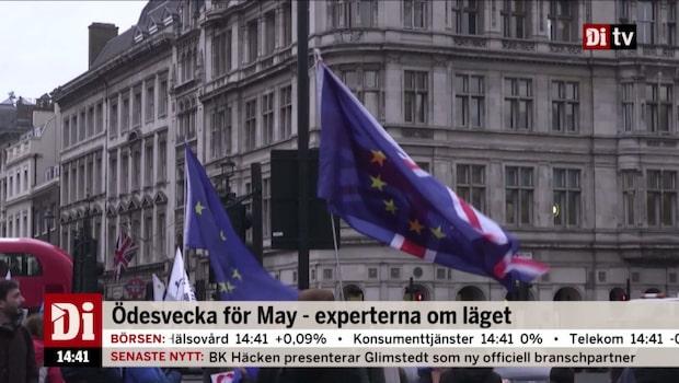 Lundgren och Letterfors om Brexit-omröstningen