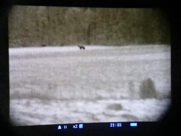 björn granath död